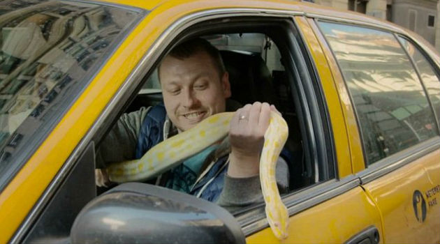 Snakes In A Cab